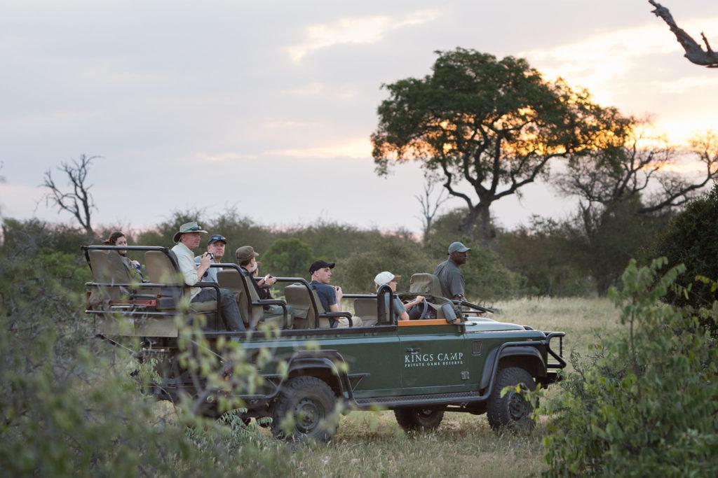 Timbavati safari